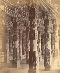 Sculptured pillars in the Mutarli Mandapa, Minakshi Sundareshvara Temple, Madurai.
